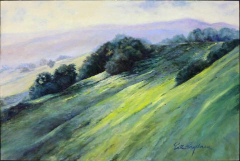 California Hills 20 x 30 oil