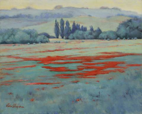 Field Poppies 24 x 30 oil