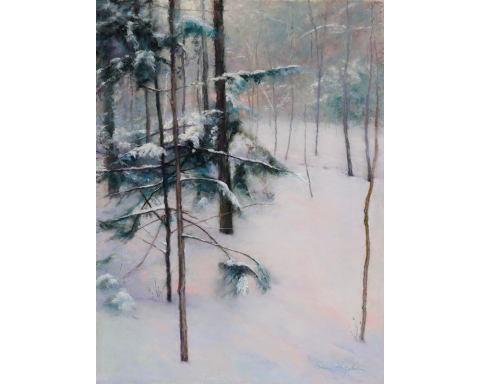 Frosty Pines 24 x 18 pastel