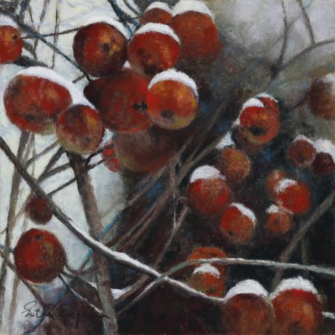 Snowcapped Crabapples 10 x 10 pastel